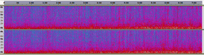 Spectrogram of 02.08 field recording.